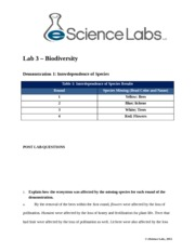 sci 207 week 4 laboratory questions Sci 207 week 4 lab 4  pyrite activated carbon water post lab questions  sci 207 week 4 lab 4 energy sources and alternative energy sci 207.