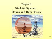skeletal lecture1rev2