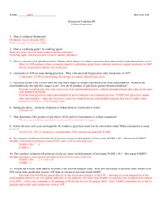 311C F09 Worksheet_9+A