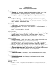 infchi psych - chapter 5 notes