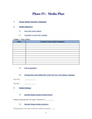 Shell Phase IV Mediai Plan Online 2012 (1)