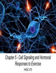 Chapter 5 - Cell Signaling and Hormonal Responses to Exercise (Part I - Jennings).pdf