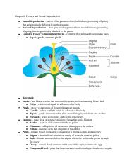 Outline Chapter 6 Flowers.docx