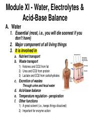 Chapter 11 - Water, Electrolytes & Acid-Base Balance.pdf