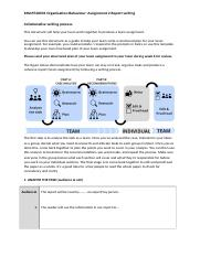 OB Assignment 2 Report Template.docx