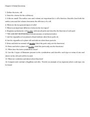 GB Chapter 4 Study Questions.doc