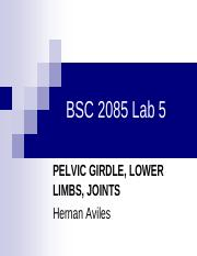 Lab5 Pelvic Girdle, Lower Limbs, Joints.pdf