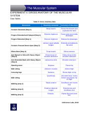 Experiment_4_Data_Tables_and_Assessment-4.docx