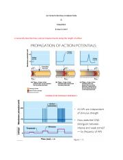 ACTION POTENTIAL CONDUCTION p3.docx