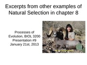 11 - Presentation #9 - Natural Selection - Summaries of other examples from chapter 8