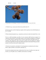Homework 10- Sweetgum tree seeds.doc