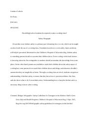 Group Essay. Safety Paragraph.docx