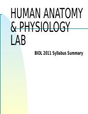 Lab_01-Anatomical_Terms-FC