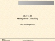 05The+Consulting+Process