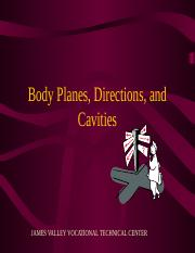 body-planes-directions-and-cavities