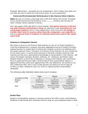 Example_Social and Environmental Performance in the Grocery Industry.docx