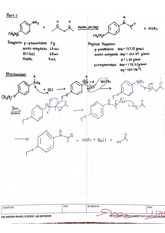 CHM 2211L Chapter 4 Synthesis of Acetophenetidin Lab Report Answers
