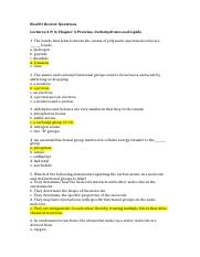 Bio201 Review Questions ch3 Proteins Carbs & Lipids-1.docx