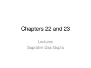 Chapters 22 and 23 (2)