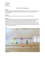 Lab 13 Paper Chromatography.docx