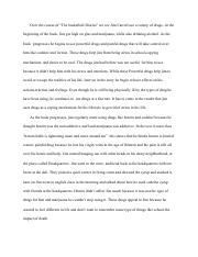 Jim Drug Essay.pdf