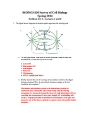 probset4_answers