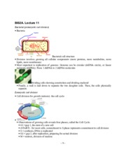 Introduction to Biology, Lecture 11