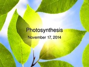 Nov 17 - Photosynthesis (1)