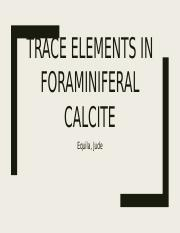 Trace elements in foraminiferal calcite