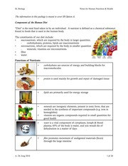 Human Nutrition Health Notes SL Biology