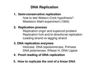 LS7DNA Replication