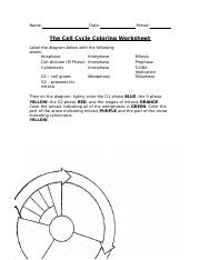 Cell Cycle Coloring Worksheet Name Date Period The Cell Cycle Coloring Worksheet Label The Diagram Below With The Following Labels Then On The Diagram Course Hero