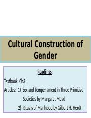 247 Constructing Gender - Culture S17 pp(1)