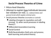 social process theories lecture 10-15