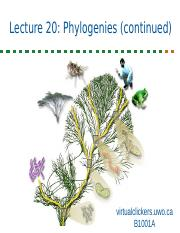 1001A+Lec20+Phylogeny+Notes