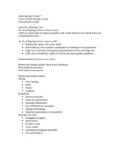 Example Of Objective For Resume