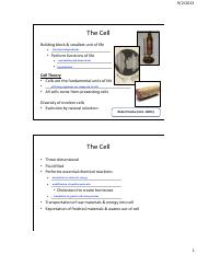 Biol 106 Lecture 4 Notes_The Cell 2
