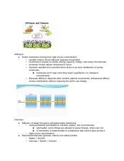 Cell Transport Answer Key - Cell Transport Answer Key 1 ...