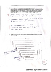 Biology 171 biodiversity and evolution quiz 7