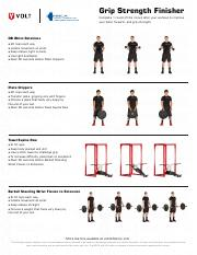 1 Pages Volt_grip_strength_finisher