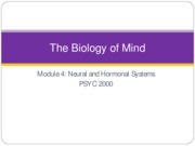 biology of the mind pysc 2000
