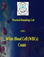 19-White-Blood-Cell-Count-جديد-2-1