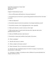 Study Guide Questions Exam 4 Chapter 8.docx