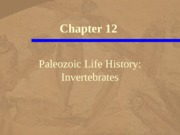chapter12 Paleozoic Life History Invertebrates