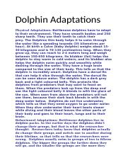 Dolphin Adaptations