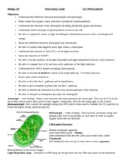 Photosynthesis_Book_Notes