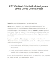 PSY 450 Week 5 Individual Assignment Ethnic Group Conflict Paper