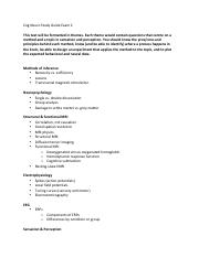 Cog Neuro Study Guide_Exam2