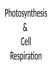 Studs notes-Photosynthesis & cell resp.ppt