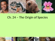 24_Origin_of_Species